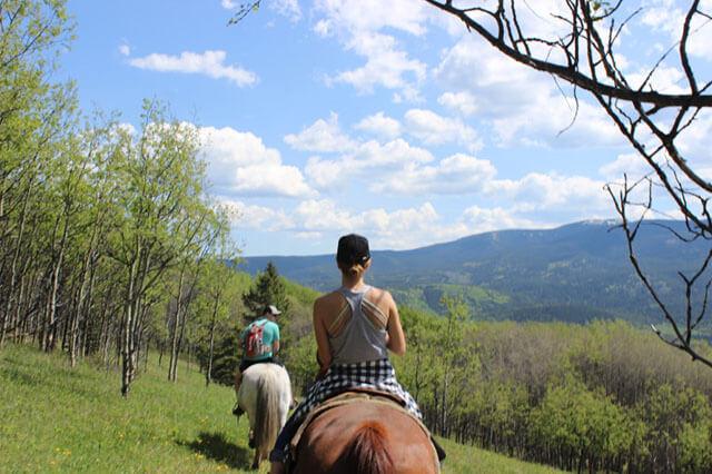 trail rides grande cache